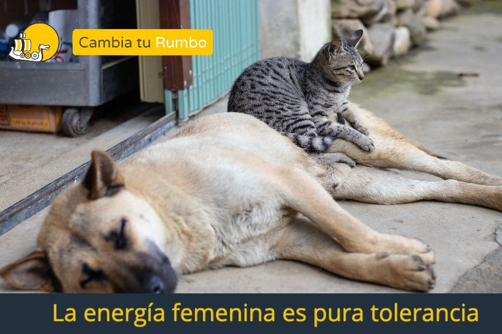 La energía femenina es tolerancia